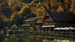 georgia lapota lake