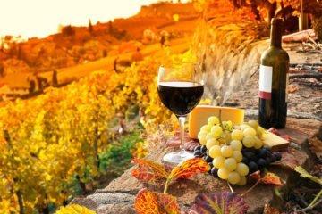 грузинского вина tour around Georgia