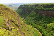 borjomi kharagauli national park nature